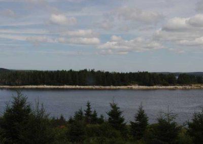 Sea Wind Landing - Driftwood